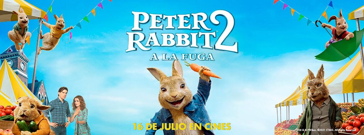 E - PETER RABBIT